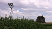 Grass, Wind And Old Barn