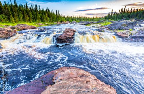 Poster Rivier Forest wild river rapids landscape