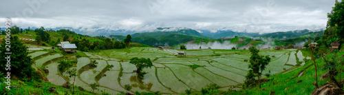 Foto auf Gartenposter Reisfelder Ban Papongpieng Rice Terraces, Chiang Mai, North of Thailand