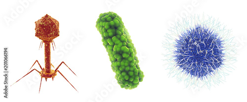 Bacteriophage virus , bacterium and Mimivirus , Set of microscopic germs that ca Canvas Print