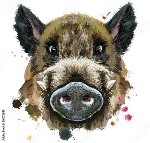 Stampa su Tela Watercolor portrait of wild boar
