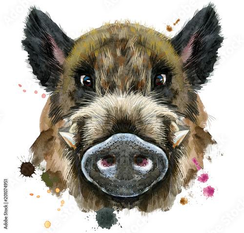 Fototapeta Watercolor portrait of wild boar