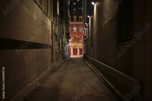 Canvas Print night alley