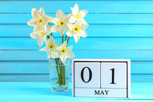 White Wooden Calendar With The Text: May 1. White Flowers Of Daffodils On A Blue Wooden Table. Labor Day And Spring.