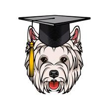 West Highland White Terrier Dog Graduate. Graduation Hat Cap. Dog Breed. Vector.