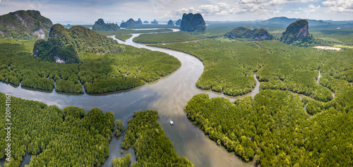 Fotografía  Aerial view of a huge natural mangrove forest with towering limestone cliffs (Ph