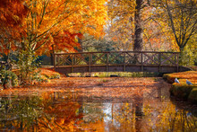 Wooden Bridge In Bushy Park Wi...