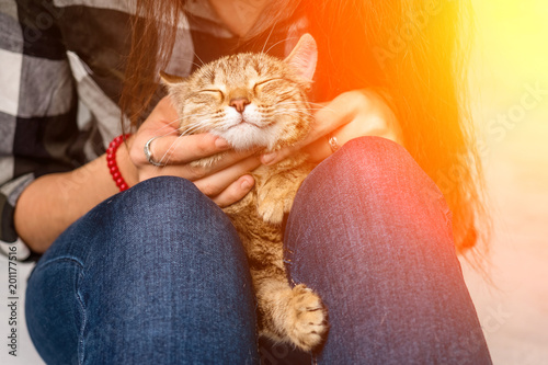 Fotografía  Close-up of a cat lying on the lap of a girl