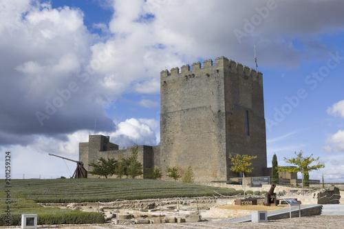 Foto op Aluminium Oude gebouw Castillo de la Mota