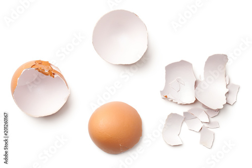 Egg Shell Isolated on White Background