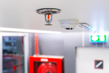 Fire Sprinkler, Focus At Selec...