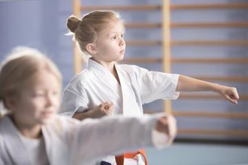 Girl on karate class