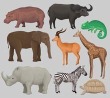 Wild African Animals Set, Hipp...