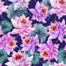 Beautiful Floral Seamless Pattern. Large Pink And Lilac Lotus Flowers With Green Leaves On Dark Purple Background. Hand Drawn Illustration. Watercolor Painting.