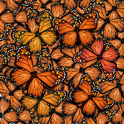 Vászonkép monarch butterflies migration