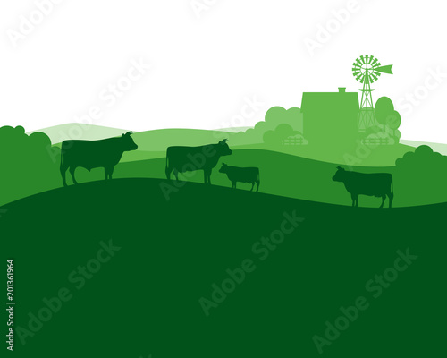 Fototapeta Rural landscape with milk farm and herd cows. obraz