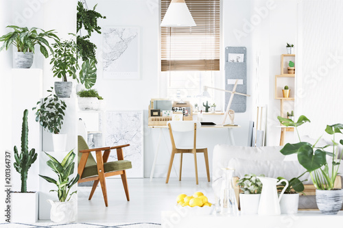 Foto  Botanical home office