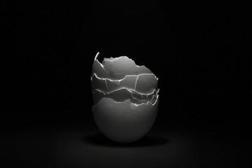 Close up of broken eggshell...