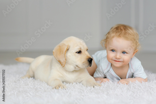 Photo Little girl with labrador puppy