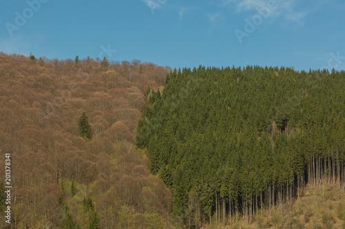 Foto op Canvas Blauwe jeans Romanian traditional landscape in Carpathians.