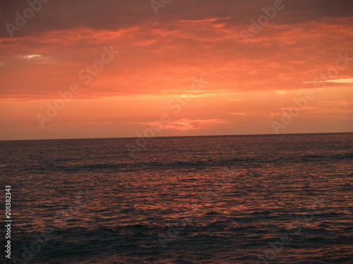 Papiers peints Corail Hawaii Sunset 1
