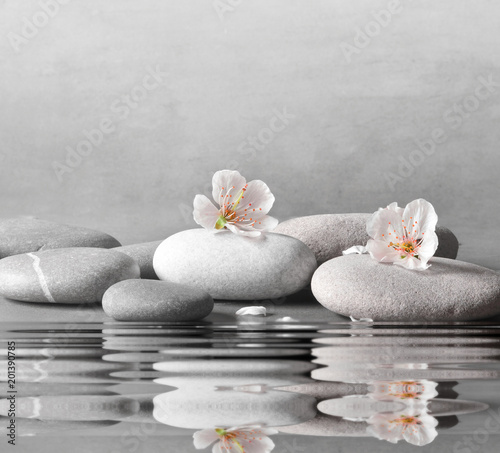 flower and stone zen spa on grey background © Belight