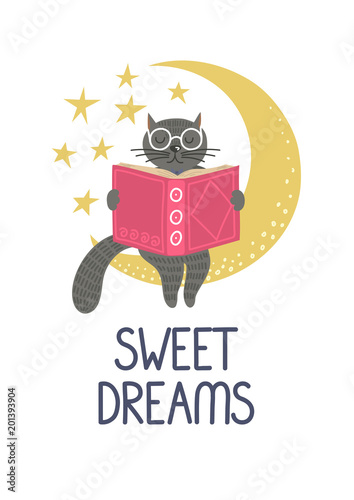 Sweet dreams  Cute clever cat reading on the moon on white