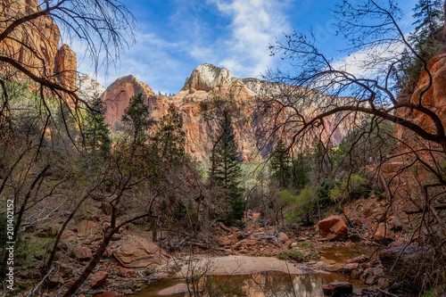 Aluminium Prints Zion National Park