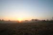 Sonnenaufgang über der Heide
