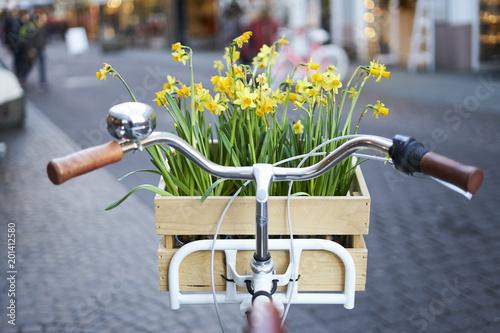 Obraz rower  kolo-kwiatow