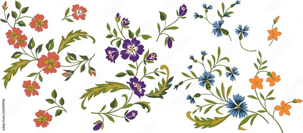 Fototapeta 野の花