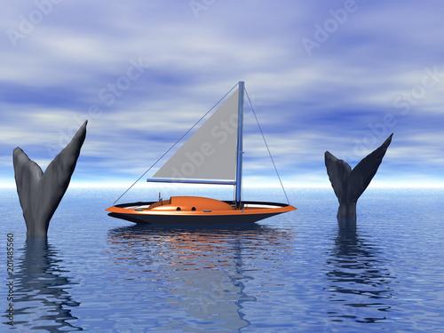 Fotografia  Seegelboot zwischen Walen