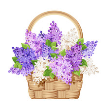 Vector Beige Wicker Basket With Purple And White Lilac Flowers.
