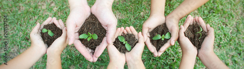 Children hands holding sapling in soil surface plant, spring or summer time, Multicultural hands of children and adult with plant, Green environment cultivate and earth day concept banner (blur)