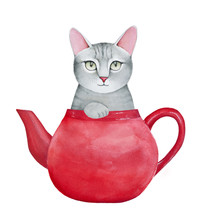 Cute Gray Kitty Character In Basic Red Ceramic Tea Pot. Blank Teapot Surface Can Be Used As Copyspace Place For Your Text Or Slogan. Handdrawn Water Color Graphic Illustration On White, Cut Out.