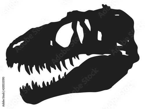 Photo  skull  dinosaur vector