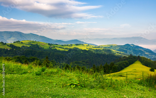 In de dag Blauwe hemel mountainous landscape in the morning. fresh summer scenery with grassy meadows on forested hills. fog in the distant valley and some clouds on a blue sky