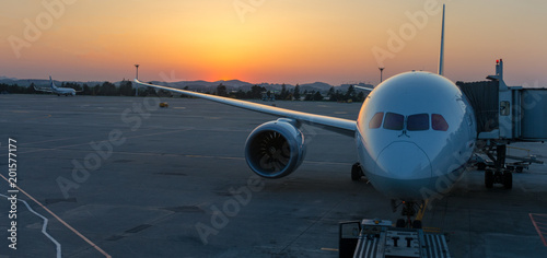 Airplane illuminated by sunset light Canvas-taulu
