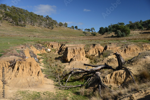 Fototapeta Erosion gully in farmland