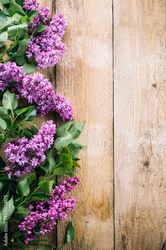 Photo sur Toile Lilac lilac branches on a wooden background, blooming lilacs, old boards, postcard, spring