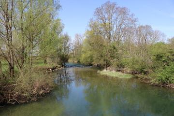 Fototapeta na wymiar Belle rivière au printemps