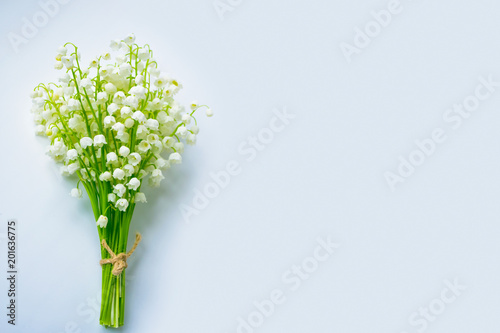 Photo Stands Lily of the valley Spring landscape. flowers lily of the valley