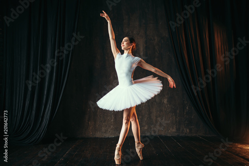 Graceful ballerina dancing in ballet class