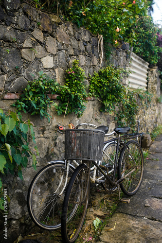 Papiers peints Velo Vintage bicycle near a stone wall with ivy