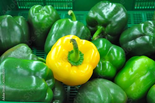 Zielona i żółta paparyka