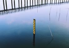 Water Level Gauge Or Staff Gauge In The Wetland
