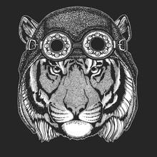 Wild Tiger Hand Drawn Image Fo...