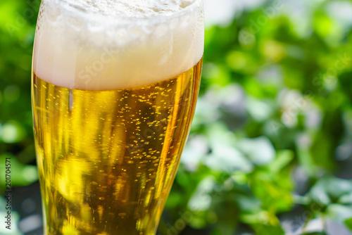 Cuadros en Lienzo  テラスでビール