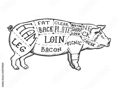 Meat diagram pig engraving vector Canvas