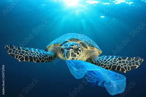 In de dag Schildpad Plastic pollution in ocean environmental problem. Turtles can eat plastic bags mistaking them for jellyfish